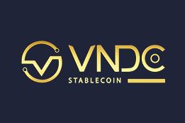 Logo VNDC Pro
